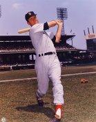 Dick Stuart  Boston Red Sox 8x10 Photo