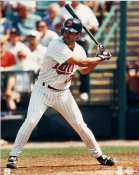 Todd Walker Minnesota Twins 8X10 Photo