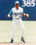 Walt Weiss Florida Marlins 8X10 Photo