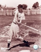 Ted Williams Boston Red Sox 8x10 Photo