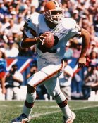 Vinny Testaverde Cleveland Browns 8X10 Photo  LIMITED STOCK