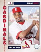 Junior Spivey LIMITED STOCK 2006 Studio St. Louis Cardinals 8x10 Photo