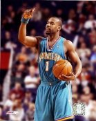 Baron Davis New Orleans Hornets LIMITED STOCK 8X10 Photo