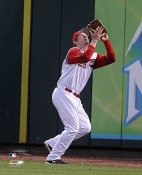 Austin Kearns Cincinnati Reds 8x10 Photo