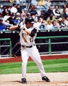 Freddy Sanchez Pittsburgh Pirates 8X10 Photo