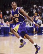 Tyrus Thomas LSU (Chicago Draft Pick) 8X10 Photo LIMITED STOCK