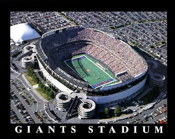 A1 Giants Stadium Aerial New York Giants 8x10 Photo
