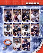 Chicago 2006 Bears Team Composite 8X10 Photo