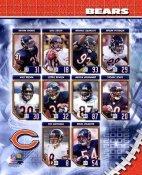 Chicago 2006 Bears Team Composite 8X10 Photo