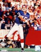 Todd Collins Buffalo Bills 8X10 Photo