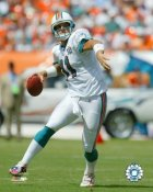 Gus Frerotte Miami Dolphins 8X10 Photo