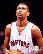 Jalen Rose Toronto Raptors 8X10 Photo LIMITED STOCK