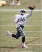 Marcus Vick Miami Dolphins 8X10 Photo