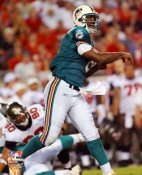 Daunte Culpepper Miami Dolphins 8X10 Photo