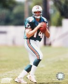 Josh Heupel Miami Dolphins 8X10 Photo