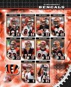 Cincinnati 2006 Bengals Team Composite 8x10 Photo