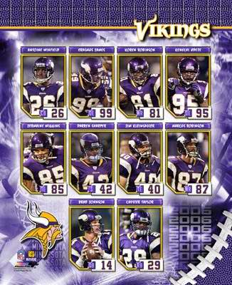 Vikings 2006 Minnesota Team Composite 8X10 Photo