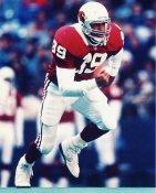 Johnny Johnson Arizona Cardinals 8X10 Photo