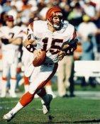 David Klinger Cincinnati Bengals 8X10 Photo