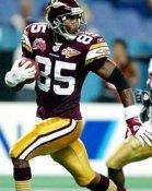 Damerien McCants Washington Redskins 8x10 Photo
