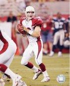 Josh McCown Arizona Cardinals 8X10 Photo