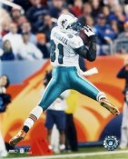Randy McMichael Miami Dolphins 8X10 Photo