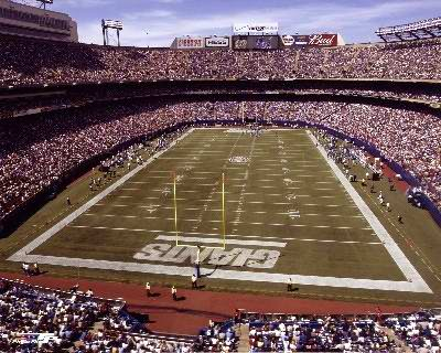 N2 Giants Stadium New York 8X10 Photo