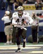 Terrelle Smith NO Saints 8X10 Photo