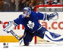 Andrew Raycroft Toronto Maple Leafs 8x10 Photo