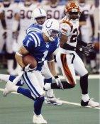Brad Pyatt Indianapolis Colts 8X10 photo
