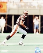 Darnay Scott Cincinnati Bengals 8X10 Photo