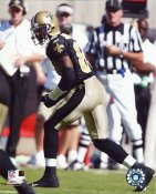 Donte Stallworth New Orleans Saints 8X10 Photo
