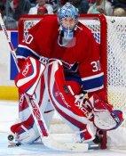 David Aebischer Montreal Canadiens 8x10 Photo