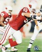 Keith Vanden Bosh Arizona Cardinals 8X10 Photo