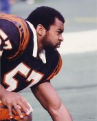 Reggie Williams Cincinnati Bengals 8X10 Photo
