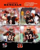 Bengals 2006 Big 4 Cincinnati 8x10 Photo