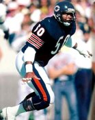 Mike Singletary Chicago Bears 8X10 Photo