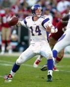 Brad Johnson LIMITED STOCK Minnesota Vikings 8X10 Photo