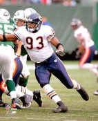 Adewale Ogunleye Chicago Bears 8X10 Photo