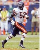 Jamar Williams LIMITED STOCK Chicago Bears 8X10 Photo