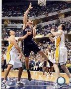 Nenad Krstic New Jersey Nets 8X10 Photo LIMITED STOCK