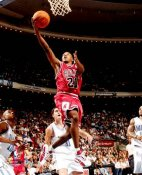 Chris Duhon Chicago Bulls 8X10 Photo LIMITED STOCK