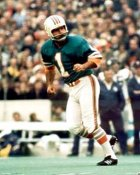 Garo Yepremian Miami Dolphins 8X10 Photo