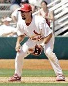 Aaron Miles St. Louis Cardinals 8X10 Photo