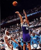 Peja Stojakovic Sacramento Kings 8X10 Photo LIMITED STOCK