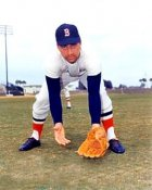 Rico Petrocelli Boston Red Sox 8x10 Photo