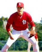 Bob Forsch St. Louis Cardinals 8X10 Photo