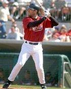 Orlando Palmeiro Houston Astros 8X10 Photo