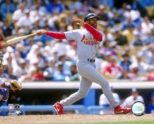 Ozzie Smith St. Louis Cardinals LIMITED STOCK 8X10 Photo