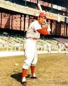Frank Torre St. Louis Cardinals 8X10 Photo